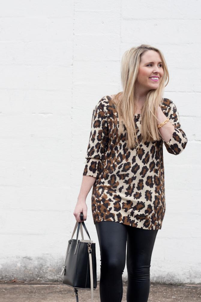 leopard-6